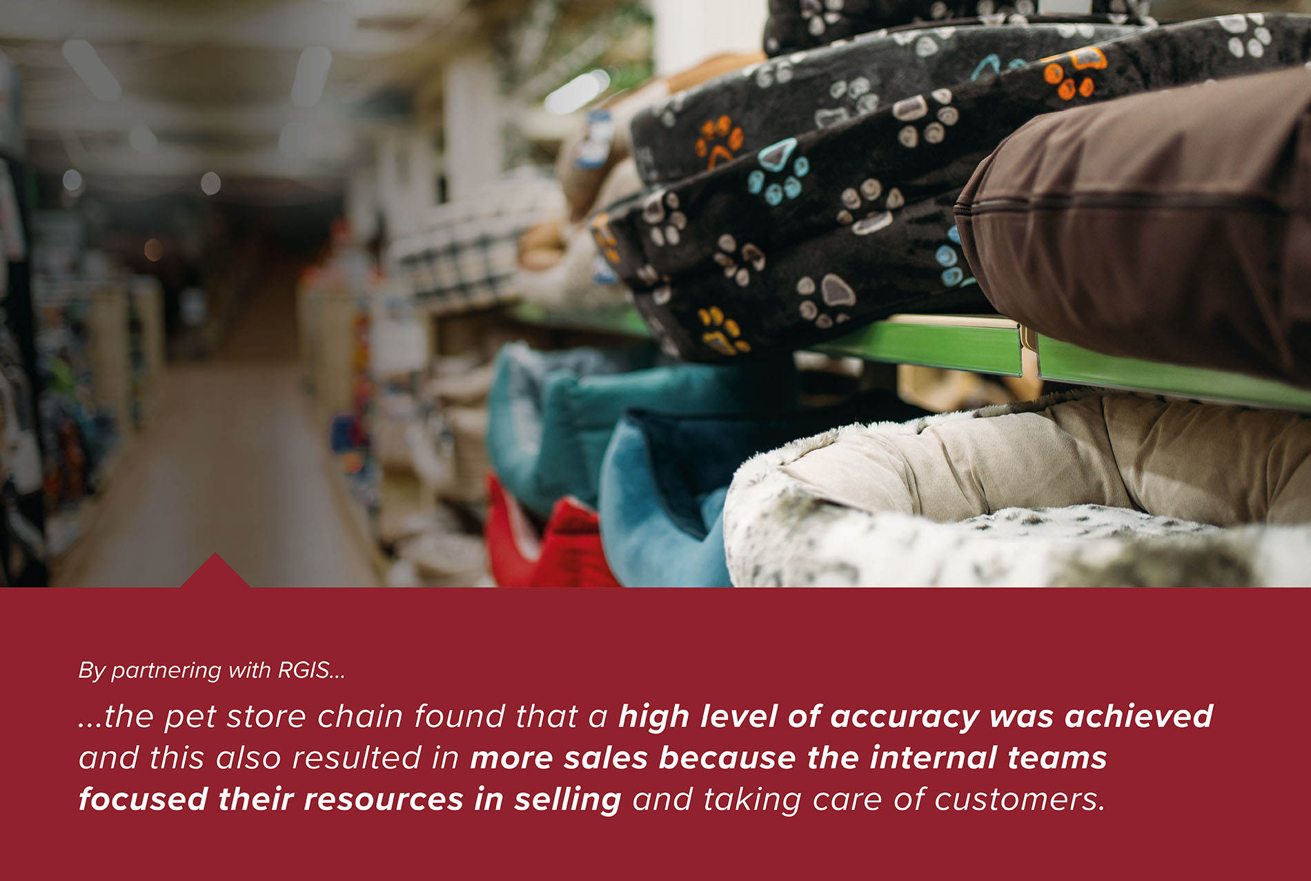 Pet Store Chain Inventory Counts to Identify Stock Loss